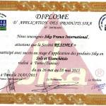 attestation-sika-france--pdf